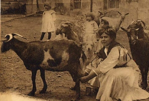 1920 Cordoba