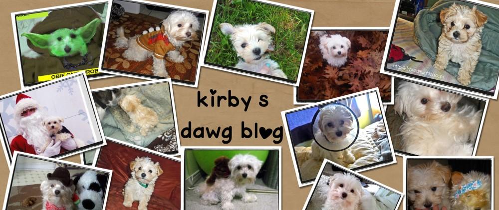 Kirbysdawgblog